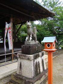 2013-07・05 西脇・豊川稲荷 (10).JPG