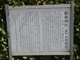 2013-09・26 塩田八幡宮 (23).JPG