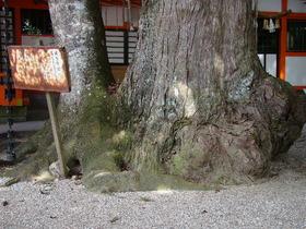 2013-09・26 塩田八幡宮 (43).JPG