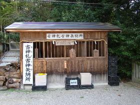 2013-09・26 塩田八幡宮 (5).JPG