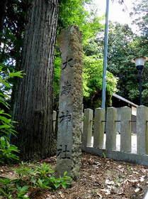 2015-05・21 三田市の大歳神社 (1).JPG