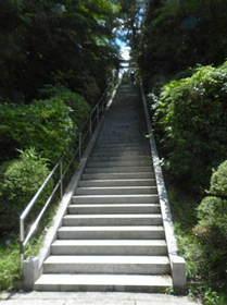2015-05・21 三田市の大歳神社 (4).JPG