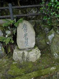 2016-08・08 我が家の墓地が有る公園模様・・・ (4).JPG