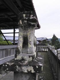 2016-09・30 若宮神社の狛犬 (1).JPG